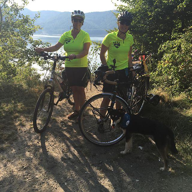 Kate Lamb Cycle
