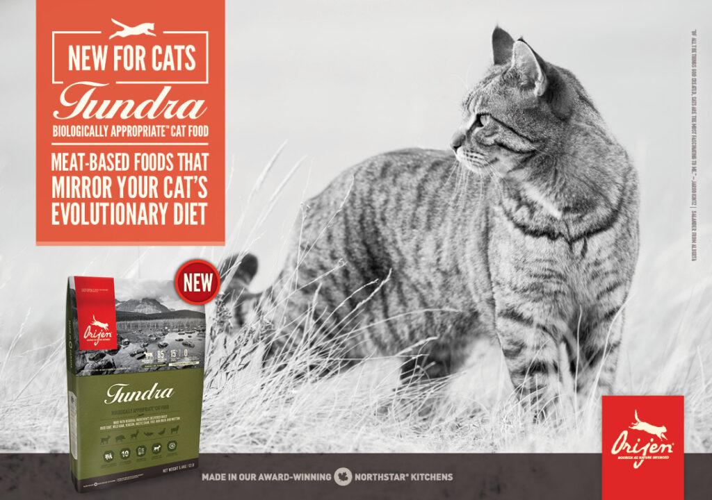 CAT TUNDRA